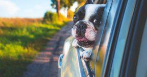 Helft van de lopende autoverzekeringen kan goedkoper